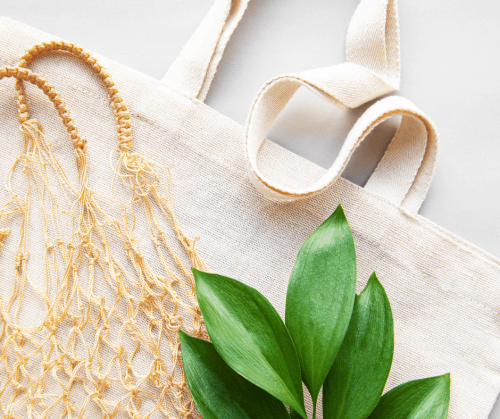 a close up photo of a canvas bag, a netted bag and the green leaves of a plant