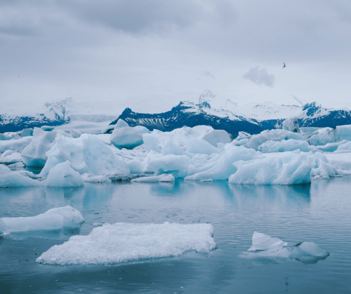 Glacial ice floating in the sea in Iceland. Photo taken by Ryan Richards.